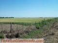 Ibarlucea: Ruta 34 Nacional km 10 - Campo 80 hectáreas, producción siembra (soja), suelo 2
