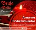 BRUJA VIDENTE DELIA 3114504503 TRABAJOS EFECTIVOS SOMETO AMARRO DOBLEGO Y DOMINO
