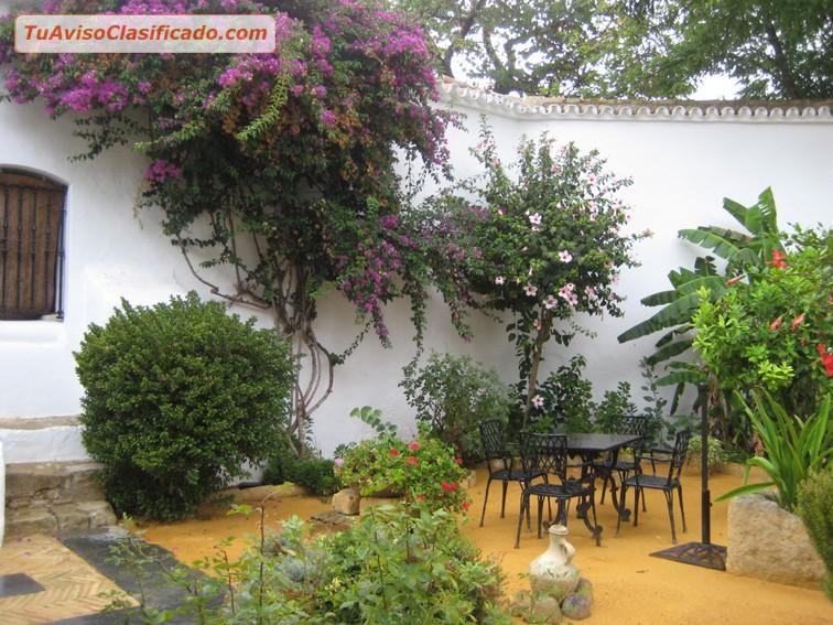 Mantenimiento de jardines y podas de baja y alta jard n for Mantenimiento de jardines